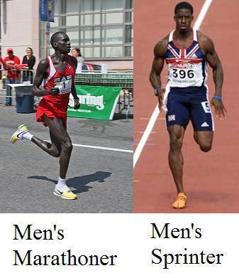 Will running change my body? : running